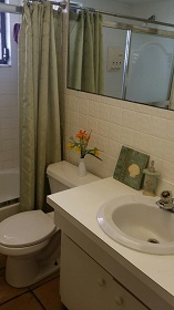 Florida Vacation Rentals by Owner - Treasure Island Florida - Sanctuary Condo - Bathroom