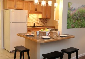 Beebalm-9-Kitchen-2-Crystal-Beach-Cottage-Rentals